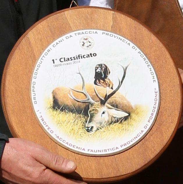 Primo premio trofeo Accademia Faunistica della Provincia di Pordenone, aggiudicato domenica 09/03/2014.