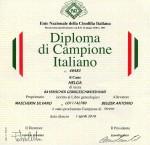 Diploma di Helga